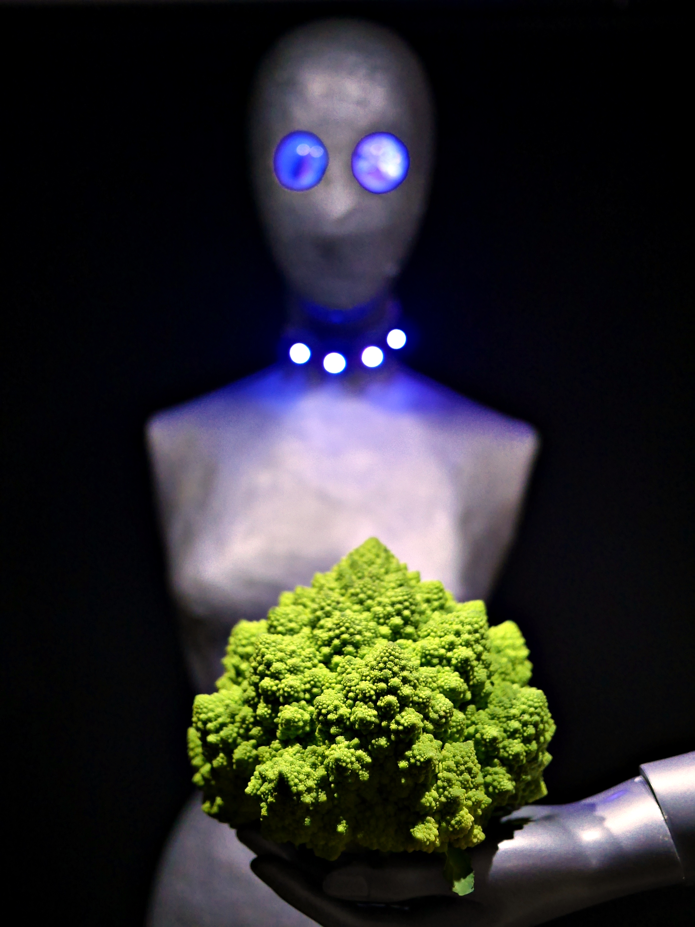 LED lighting demo. 2016-11-05 The Aliens and the Romanesco