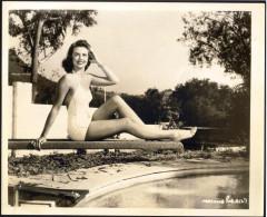 influences: Dorothy Malone, swimsuit