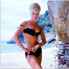 influences: Elke Sommer